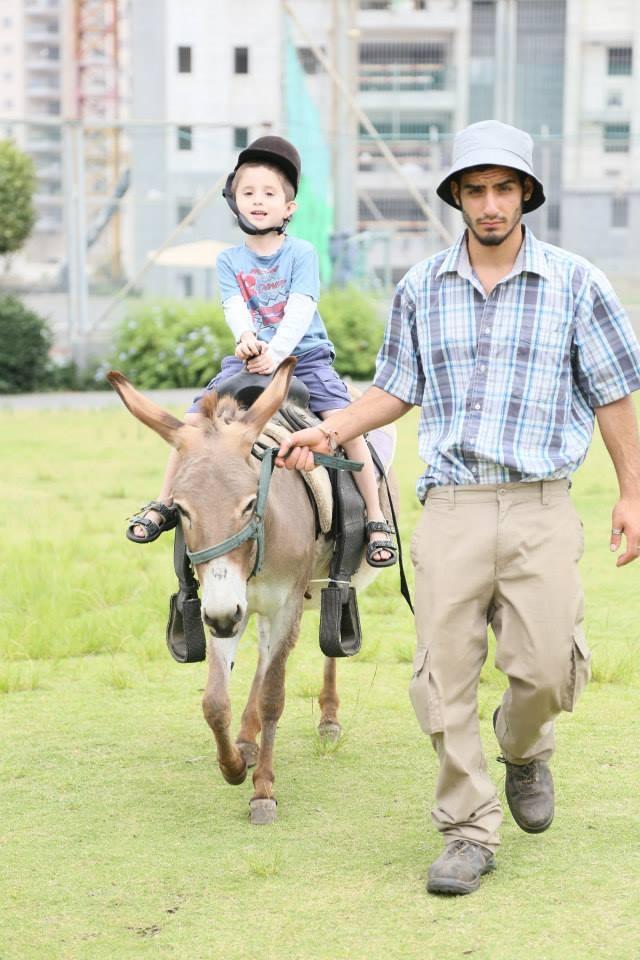 רכיבה על סוסים וחמורים